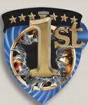 Custom 1st Place Stock Full Color Burst Medal (3