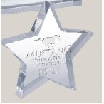 "Star Paperweight (5"")"