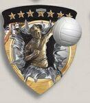 Custom Female Volleyball Stock Full Color Burst Medal (3