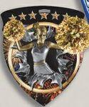 Custom Cheerleading Stock Full Color Burst Medal (3