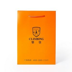 "210g C1S paper bag with foil imprint on all sides (8.25*10.5*4"")"
