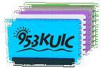 Custom Mini Ice Scraper - Credit Card Size
