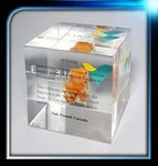Custom Lucite Cube Award (3