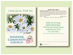 Custom Shasta Daisy/ Alaska Flower Seed Packet