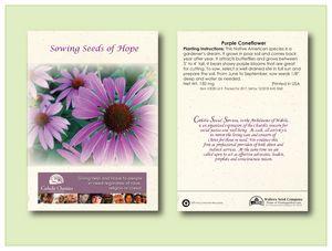 Purple Coneflower Seed Packet