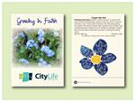Custom Forget-Me-Not Seed Packet