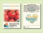 Custom Organic Tomato Beefsteak Seed Packet