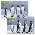 Custom 3D Lenticular Gift Card w/ Animated Penguins Images (Imprinted)