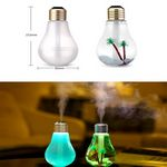 Custom iBank Light Bulb Air Humidifier with USB Cable