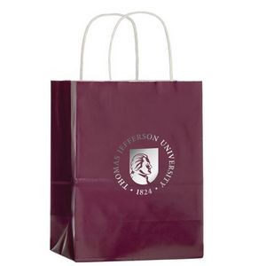 Gloss Colored Paper Shopping Bags