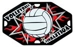 Custom Street Tags - Volleyball