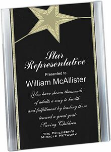 Gold star acrylic stand up plaque 6 x8 vpx26bg swag brokers - Achat plaque plexiglass castorama ...