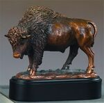 Custom Buffalo Pride Award. 7