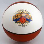 Custom Basketball - Full Sized 1 Panel