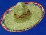 Custom Sombrero Hat