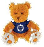 Custom Softest Thing Ever - Golden Bear