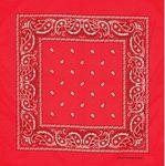 Custom Red Fashion Bandana