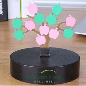 Magnetic Sculpture Desk Toy- 1 Tree 12 Apples