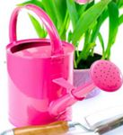 Custom Watering Can