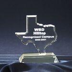 Custom Texas State Award (6 1/2