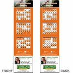 Custom Detroit Pro Baseball Schedule Bookmark (2