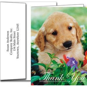 Thank You Greeting Cards w/Imprinted Envelopes