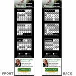 Custom Chicago (American) Pro Baseball Schedule Bookmark (2