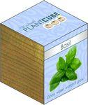 Custom Plant Cube- Basil