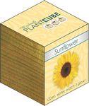 Custom Plant Cube - Sunflower