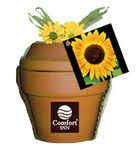 Custom Deluxe Plant Kit with Sunflower Seeds