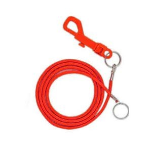 Elastic Bungee cord with P Clip 36""