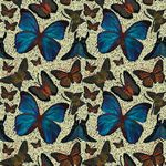 Custom Jennifer Taylor Adhesive Accents-Butterflies (1'x2')