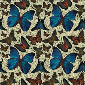 Jennifer Taylor Adhesive Accents-Butterflies (1x2)