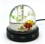 Custom Dome Pen Interface Aquarium USB Hub - 4 Port
