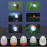 Custom Egg Camp Light (Energy Saving)