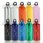 Custom 20 Oz. Aluminum Sports Bottle/ BPA-Free