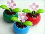 Custom Solar Flowers