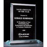 Custom Apex Series Acrylic Award on Acrylic Base. 7x8.25