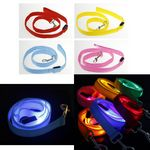 Custom Glow in the Dark Led Pet Traction Rope Leashes