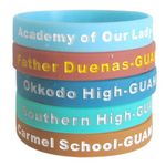 Custom Color Filled Wristband/Debossed Ink Filled