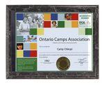 Custom Pocket Black Marbleized Certificate Holder 6