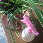 Custom 450ml Candy Color Hand Pressure Watering Can Garden Tool