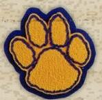 Custom Mascot - Solid Embroidery on Double Felt - Class A - 3
