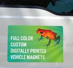 Custom Vehicle Magnets 12