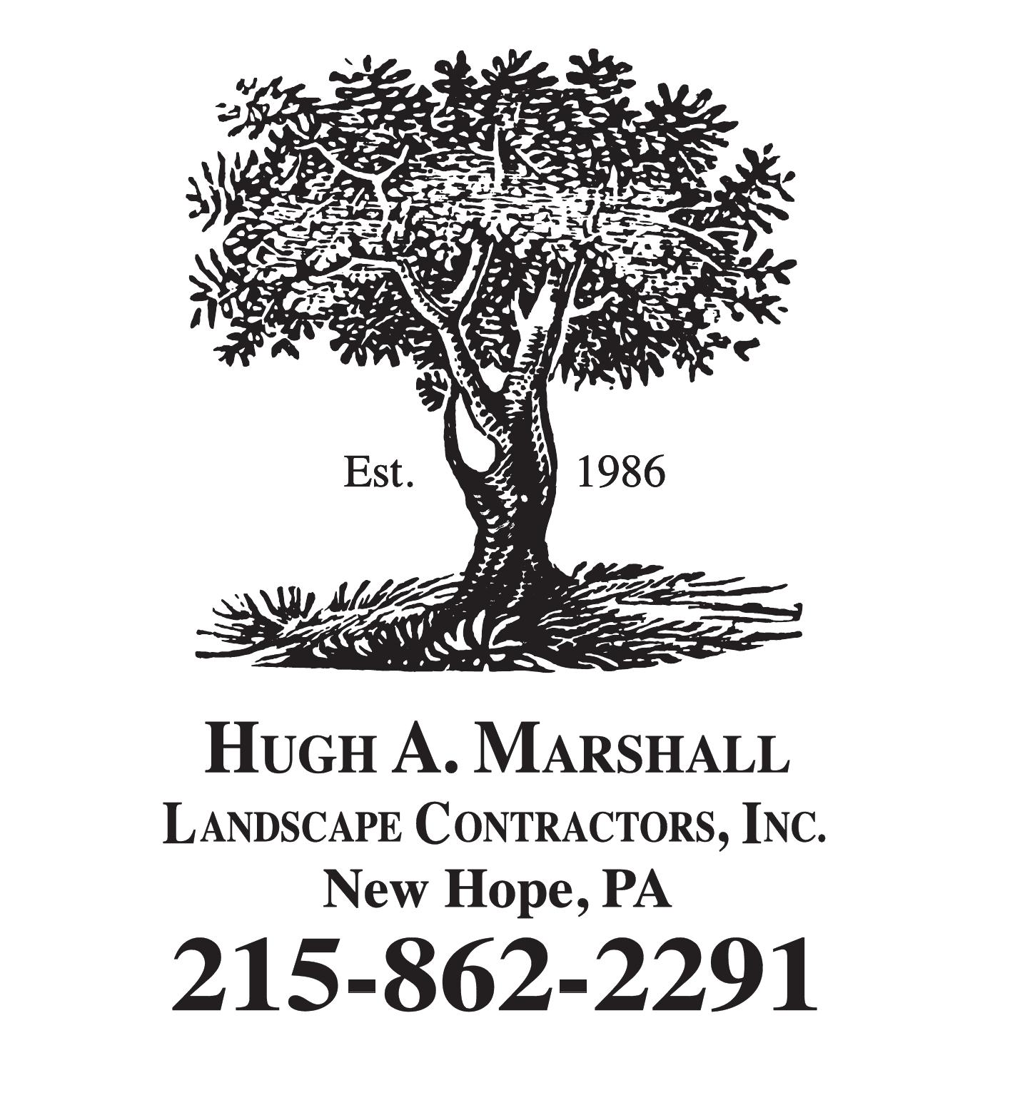 Hugh Marshall Landscape 36921
