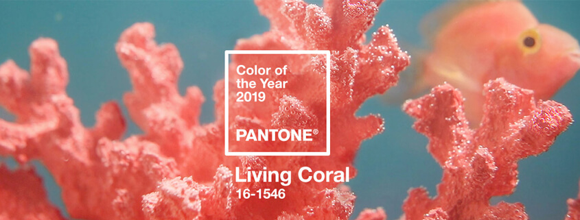 Embrace Living Coral in Summer Marketing
