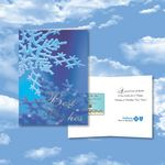 Custom Cloud Nine Christmas / Holiday CD Download Card - CD141 Home for the Holidays/CD103 Winter Dreams