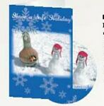 Custom Have a Safe Holiday CD Greeting Card
