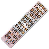 "8"" Plastic Presidents Ruler"