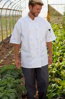 White Antigua Short Sleeve Performance Chef Coat (XS-XL)